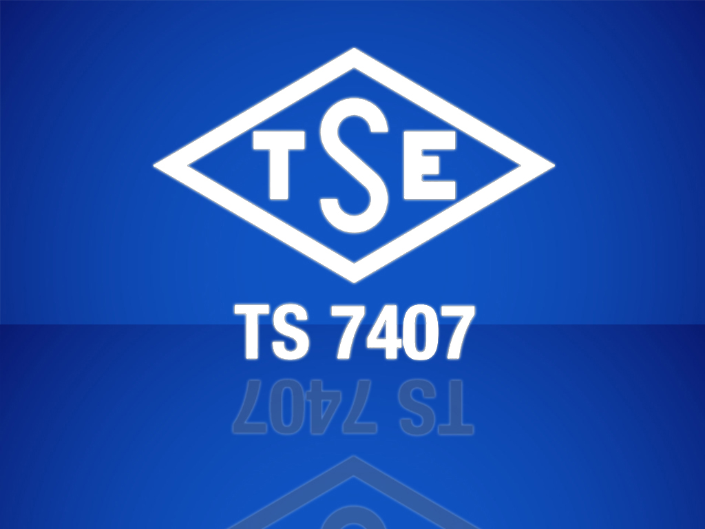 TS 7407